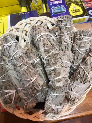 sage for Sale in Mesquite, TX