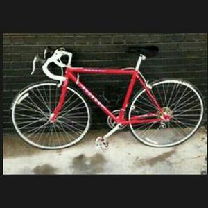 "26"" RED Bianchi Premio Road Bike 52cm Frame for Sale in Honey Brook, PA"