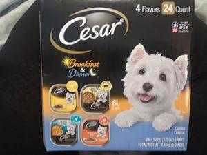 Cesars 24 pk dog food ((Brand New)) for Sale in Fort Washington, MD