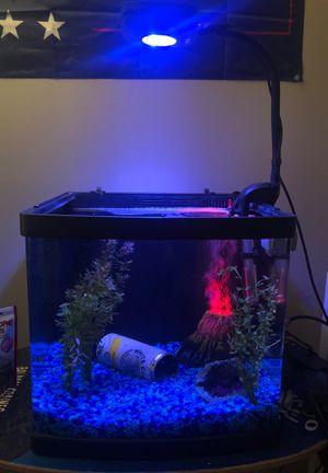 Fish tank for Sale in Fairfax, VA