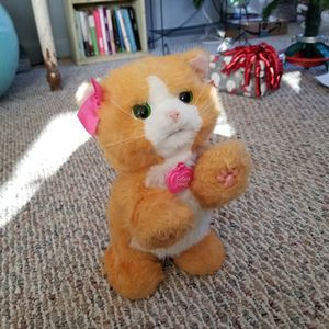 FurReal Friends Kitty for Sale in Rockford, IL