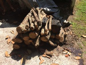 Free Pile of Firewood for Sale in Smyrna, GA