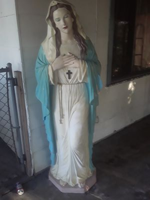 Mary for Sale in Dunedin, FL