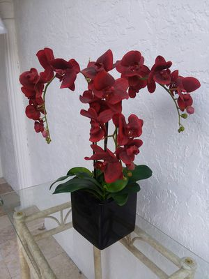 Orchids plant fake for Sale in Deltona, FL