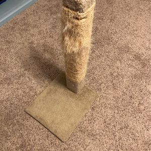 Cat Scratching Post for Sale in Covington, WA