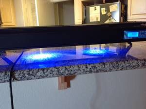 Fish /Planted Tank Lamp for Sale in Palm Desert, CA