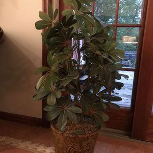 Nice Artificial Plant for Sale in Oakton, VA
