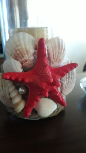 Seashell candle holder for Sale in Montebello, CA