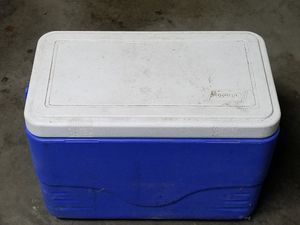 Small Coleman cooler. 19 by 11 by 13 in tall good condition Long Beach 92814 cash only for Sale in Long Beach, CA