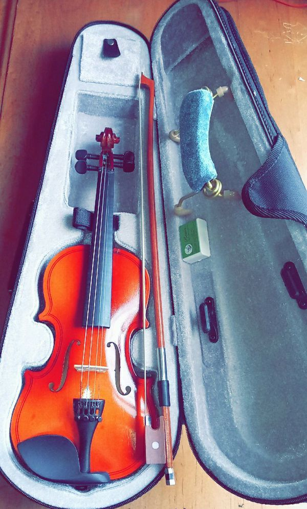 🎻 violín