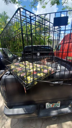 xl xlarge 36inches long x 26 tall x 24 wide pet cage crate dog carrier taxi kennel with double doors ....LOCATED ON KROME AND SW 200ST for Sale in Homestead, FL