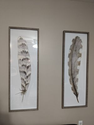 Large Feather Decoration Pictures for Sale in Shelbyville, TN
