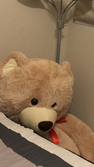 Giant Ass Teddy Bear for Sale in Dallas, TX
