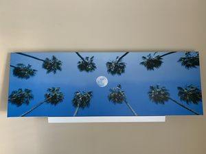 Wall art Palm Trees and the Moon Picture for Sale in Los Angeles, CA