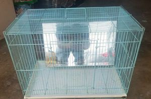 🐦 Old bird cage for Sale in Huntington Beach, CA