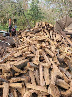 Firewood oak and pecan for Sale in Houston, TX