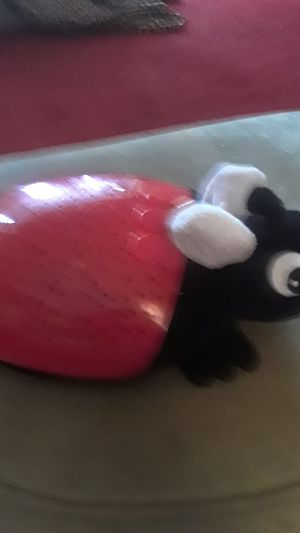 Nightlight ladybug for Sale in Tampa, FL