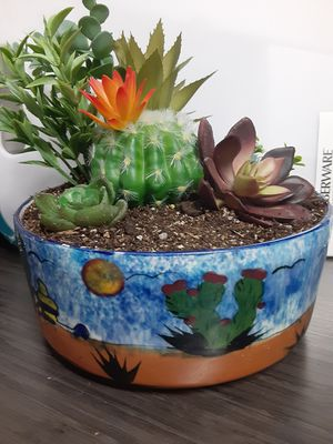 Cactus and succulent garden in a pretty southwest pot for Sale in Mesa, AZ