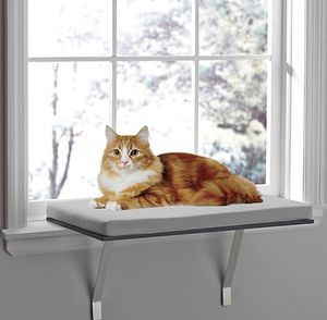 Pawslife Deluxe Window Cat Perch for Sale in Charlotte, NC