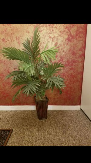 """ARECA PALM ARTIFICIAL 30"""" H for Sale in MONTGOMRY VLG, MD"""