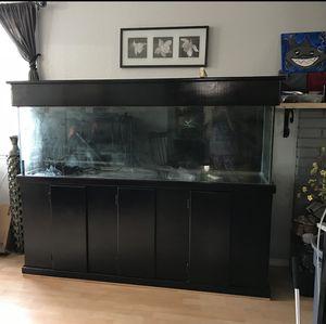 125 gallon aquarium for Sale in Lynnwood, WA