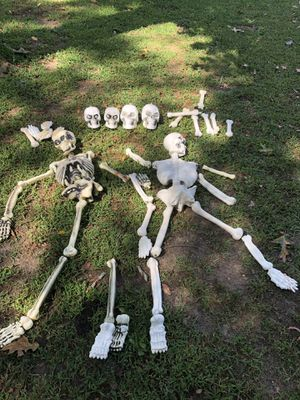 Halloween skeleton bone decorations for Sale in Atco, NJ