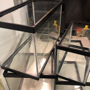 Fish Tanks + Decor Lot (Sold All Together) ON SALE! for Sale in Novato, CA