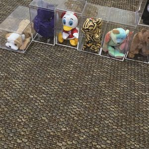 Beanie babies for Sale in Lakeland, FL