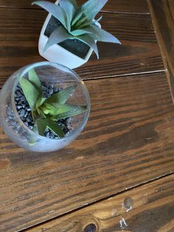 Fake Plants for Sale in Kalamazoo,  MI