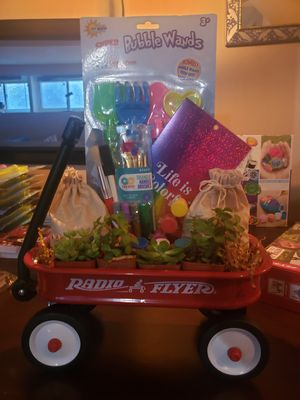 Radio flyer gift baskets. Succulent planter and rocks painting. for Sale in North Massapequa, NY