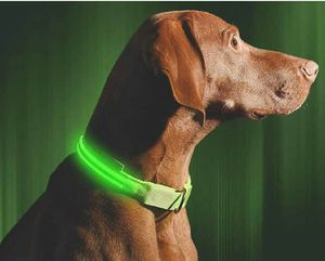"""LED Dog Collar - USB Rechargeable - Makes Your Dog Visible, Safe & Seen. MEDIUM 16""""-20"""". New open bag. for Sale in Fort Worth, TX"""