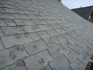 Hail Damage in your area? for Sale in Lincoln, NE