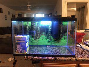 10 gallon aquarium for Sale in Orlando, FL