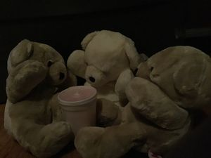 Teddy bear bundle does not include drink for Sale in Lowell, MA