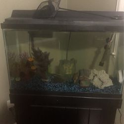Fish Tank And Accessories for Sale in Lodi,  CA