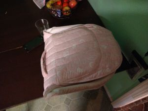 Baby Delight Snuggle Nest for Sale in San Diego, CA