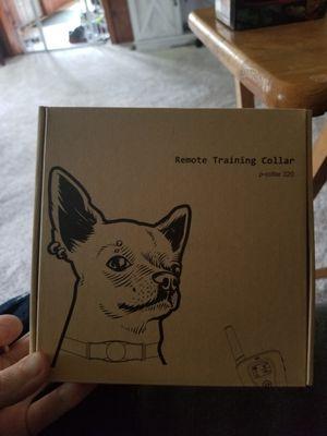 Dog training collar for Sale in Canastota, NY