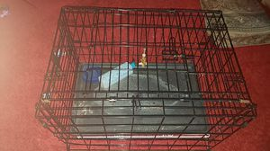 Cage for Sale in Gaithersburg, MD