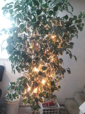 Healthy looking artificial tree. for Sale in Everett, WA