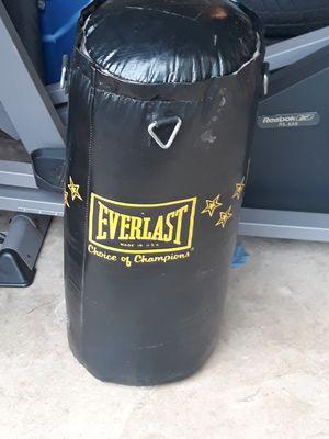 Everlast speed bag for Sale in DeSoto, TX