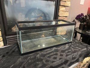 20 gallon fish tank for Sale in Arlington, WA