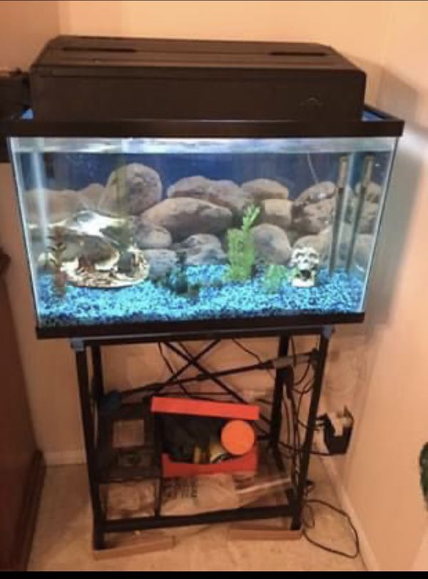 Fish tank, very clean and ready to go