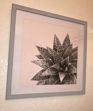 Succulent Framed Art for Sale in Phoenix, AZ