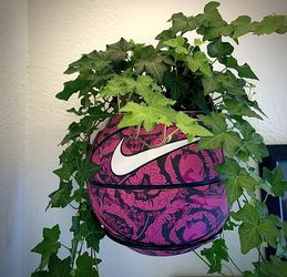 Nike Basketball Plant Holder for Sale in Los Angeles,  CA