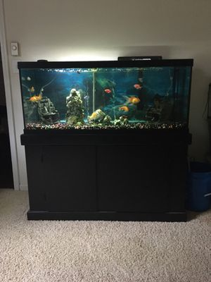 75 Gallon Fish Tank for Sale in Salisbury, NC