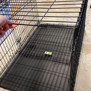 Large Dog Crate for Sale in Zephyrhills, FL