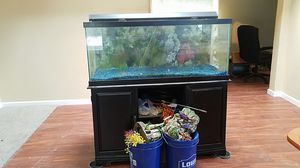 75 Gal. Fish Tank for Sale in Chandler, AZ