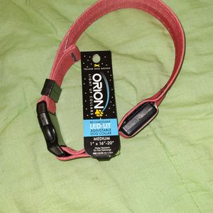 """Orion Dog Collar Size M 1""""×16""""20. for Sale in West Valley City, UT"""