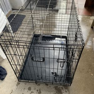 Dog Crate for Sale in Chino Hills, CA