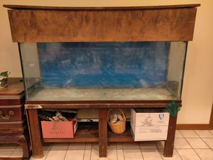 75 gallon aquarium with stand, canopy, filters, extras for Sale in Gardena, CA
